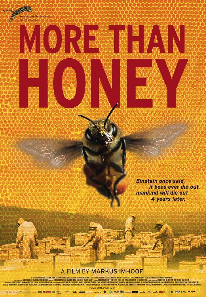 More Than Honey Film