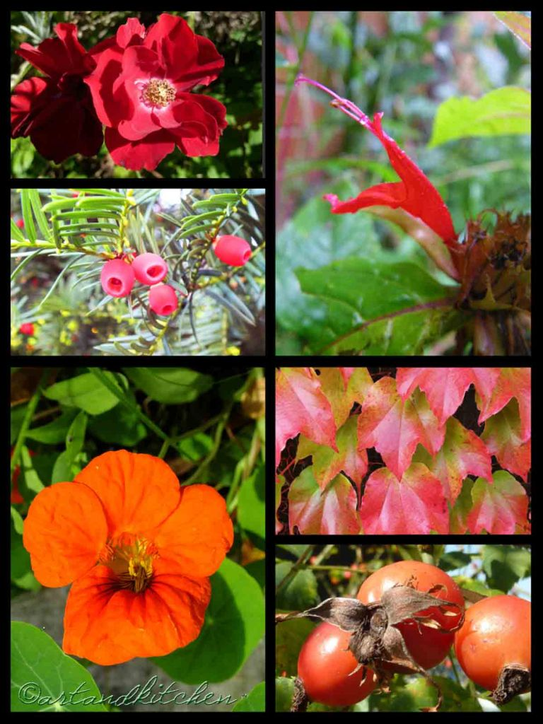 Red and green collage