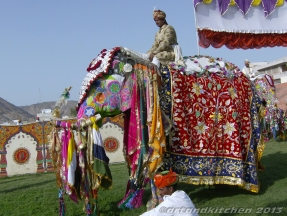 Colors in Rajasthan 11