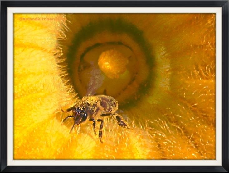 bee inside