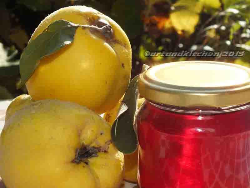 Quince Jelly and Quince Paste (Dulce de Membrillo) | artandkitchen