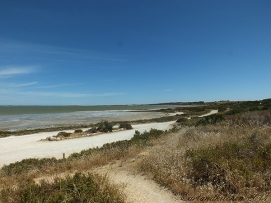 Coorong-Nationalpark 2