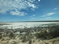 Coorong-Nationalpark 3