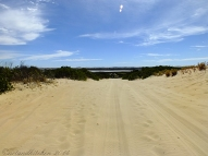 Coorong-Nationalpark 5