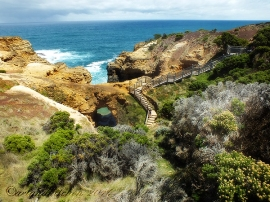 great ocean road attrations4