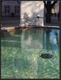 Basel Walking Tour January 2015 _ Münster square fountain