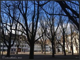 Basel Walking Tour January 2015 _ Münster square