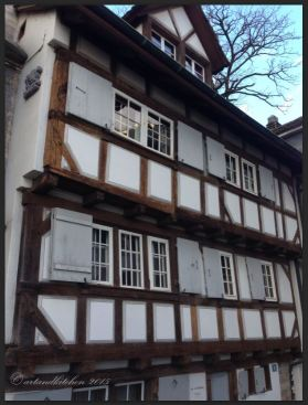 Basel Walking Tour January 2015 _Huus zur Waltpurg 2
