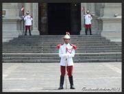 Lima 15