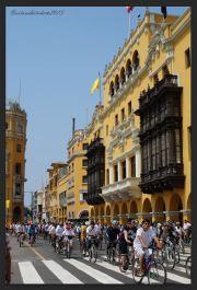 Lima 44