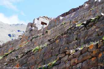 Sacred Valley (21)