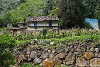 Sacred Valley (30)