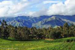 Sacred Valley (32)