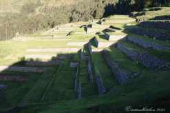 Sacred Valley (39)