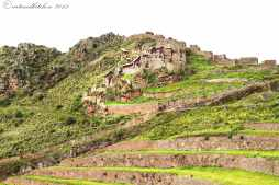 Sacred Valley (6)
