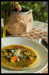 Cheese-Fondue-Soup-1