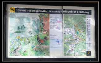 schwarzwald-2017-6-of-28