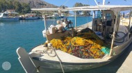 Crete summer 2018-11